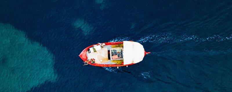 Pesce fresco online a domicilio pescheria gallarate StaseraPesce